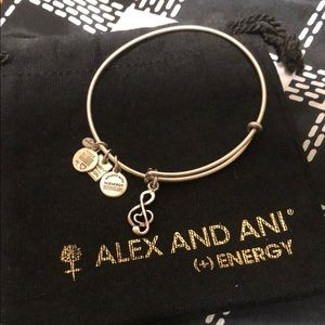Alex And Ani Sweet Melody Charm